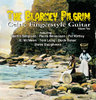The Blarney Pilgrim - Celtic Fingerstyle Guitar, Vol.2