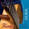 Fisoma Silber - Strings for Childrens' Guitars